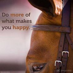 Do more of what makes you happy. Do more horse stuff :D