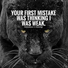 Moving On Quotes : Are u Moving in silence ? Lion Quotes, Wolf Quotes, Joker Quotes, Wisdom Quotes, True Quotes, Great Quotes, Motivational Quotes, Inspirational Quotes, Nice Day Quotes
