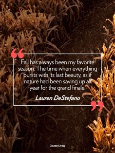 "Fall~* ""Everything bursts with its last beauty, as if nature has been saving up all year for the grand finale."""