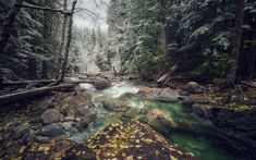 Download wallpapers mountain river, forest, winter, snow, mountain landscape