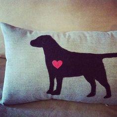 amantes de los perros4