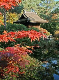 Japanese Garden at Tatton Park  in Cheshire, England  (photo by George Littler and Peter Spooner)