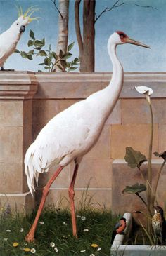 """Henry Stacy Marks  - 1829 1898 - Indian Crane, Sulphur-crested cockatoo, Bullfinch and Thrush - Odd but beautiful bird compositions from the Victorian / British Arts & Crafts period. - Apparantly from a series of 12 painted panels for an 1890's """"Ante-Drawing room"""". Eaton Hall, Cheshire"""