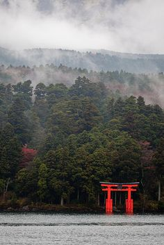 japan 2009 Tori Gate in Hakone, Kanagawa, Japan. When I was in Hakone it was shrouded in fog like this in the evening and morning. You couldn't see the water at all, then suddenly it would part and you could see the lake. Really gorgeous.