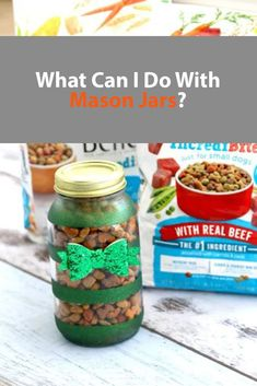 What Can I Do With Mason Jars? Glitter Mason Jars, Painted Mason Jars, Mason Jar Crafts, Mason Jar Diy, 7 Day Challenge, Dog Food Recipes, Healthy Recipes, Dog Food Storage, What Can I Do
