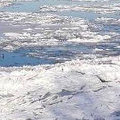 Led na Dunavu - Zabranjena plovidba Dunavom zbog ledenih santi (3)
