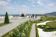When you are near Slovak border in Austria it is worth to visit this castle and its colorful gardens with lot of benches Maria Theresia, Colorful Garden, Austria, Golf Courses, Sidewalk, Castle, Terrace, Lawn And Garden, Nice Asses