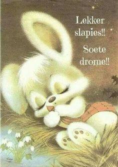 Vintage sleeping bunny - so sweet Cartoon Images, Cute Cartoon, Cute Images, Cute Pictures, Bunny Painting, Cute Animal Drawings, Animal Cards, Vintage Greeting Cards, Cute Illustration