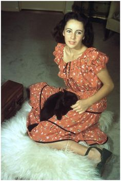 Elizabeth Taylor starred in The Courage of Lassie, 1946.