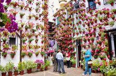 Los cordobeses abren sus patios floridos cada año en el Festival de los Patios. Te vas a enamorar de ellos...