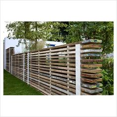 GAP Photos - Garden & Plant Picture Library - Fencing made from reclaimed scaffold boards surrounded by Eryngiums - 'Our First Home, Our First Garden' - Gold medal winner - RHS Hampton Court Flower Show 2012 - GAP Photos - Specialising in horticultural photography