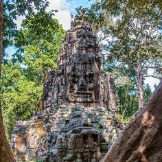 A #face between the #trees (#AngkorThom #SiemReap #Cambodia)