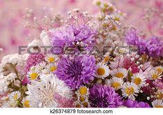 flores Ver Imagen agrandada