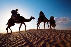 Sinai By Starlight - From Sharm El Sheikh