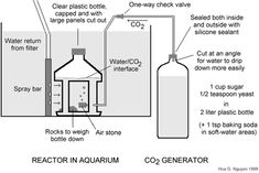 You don't have to buy EVERYTHING for your fish tanks. DIY Yeast-Generated CO2 System