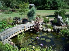 large pond with bridge
