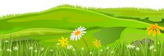 Grass Cover PNG Clip Art Image