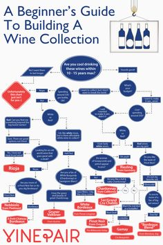 You don't have to break the bank in order to collect wine. Our infographic recommends great bottles for any starter collection, based on your tastes.