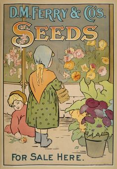 D.M. Ferry Victorian Era Art Nouveau Style Flower Seed Poster.  victorian Turn-of-the-Century illustrated ads