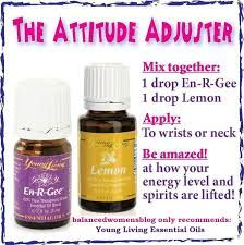 Image result for product sheet for young living En-R-Gee oil