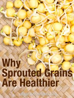 Why Sprouted Grains Are Healthier / http://villagegreennetwork.com/sprouted-grains-healthier/