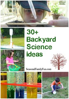 30+ Backyard Science Ideas #funforkids #science #DIY #crafts #kids…