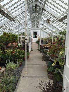 Blithewold greenhouse