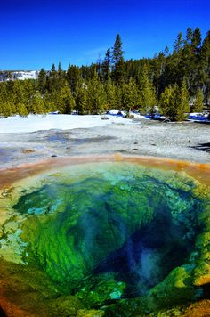All sizes | Morning Glory Pool in the Upper Geyser Basin, Yellowstone National Park | Flickr - Photo Sharing!