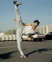Donnie Yen, an awesome martial artist.