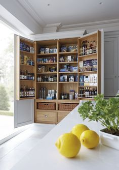 12 stylish and practical pantry ideas for your kitchen 12 Pantry Ideas – Larder Cupboard Ideas For Every Kitchen - Own Kitchen Pantry Kitchen Larder Cupboard, Kitchen Pantry Design, Kitchen Storage, Pantry Storage, Pantry Organization, Kitchen Cabinets, Kitchen Designs, Larder Cupboard Freestanding, Kitchen Island