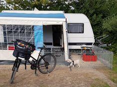 Recreational Vehicles, Rabbit, Walking Away, Fenced Garden, Trench, Small Animals, Puppys, Bunny, Rabbits