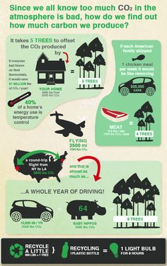 #GreenAirProject carbon footprint infograph