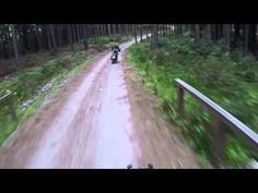 Triumph Tiger EXP vs Tiger 800 XCx on dirt road