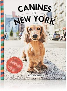 "SIMON & SCHUSTER Canines Of New York. A must-have for lovers of dogs and the city ""FTC disclosure: This pin contains affiliate link, which means I may receive a small commission, at not cost to you, for purchases made through it"" Dog Lover Gifts, Dog Gifts, Dog Lovers, Dog Books, Coffee Table Books, Fun At Work, Beautiful Kitchens, Barneys New York, Wildlife Photography"