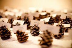 wedding ideas do it yourself - Google Search