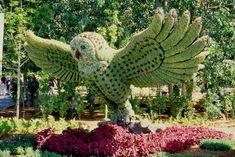My Owl Barn: Montreal Botanical Garden: Mosaiculture