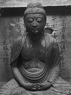 """""""Love is a fleeting emotion, to reach true nirvana one must know themselves and forsake love, for it breeds contempt.""""  ― Gautama Buddha"""