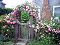 Gartentor mit rosenboden für den Bauerngarten