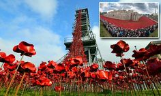 Iconic Tower Of London poppies inspire a new audience