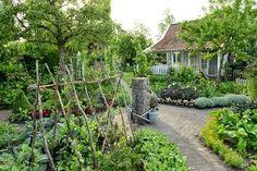 Lilla köksträdgården