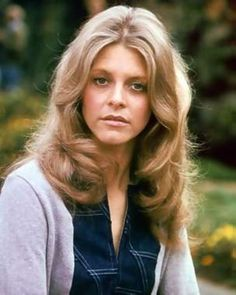 Another one of my favorite TV shows in the 70s was THE BIONIC WOMAN with Lindsey Wagner.