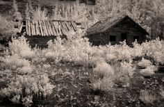 Ghost Towns: Silver City, Yukon Territory | Atom's Picture Blog