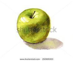 Green Apple Watercolor Illustration - stock photo
