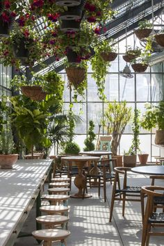 Restaurant Visit: Roy Choi's Commissary, Inside a Greenhouse in LA Boho Patio :: Backyard Gardens :: Courtyard + Terraces :: Outdoor Living Space :: Dream Home :: Decor + Design :: Free your Wild :: See more Bohemian Home Style Ideas + Inspiration California Christmas, Cafe Design, Interior Design, Interior Garden, Room Interior, Indoor Plants, Hanging Plants, Hanging Baskets, Indoor Outdoor