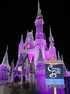 Disney Celebrating in ORLANDO, FL