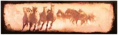 Large Born Free Stretched Horses Canvas Art Print