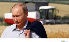 Putin vuole che la Russia diventi autosufficiente e il più grande esportatore mondiale di cibo non OGM e biologico,ecologicamente pulito e di alta qualità
