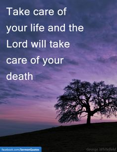 Take care of your life and the Lord will take care of your death. — George Whitefield