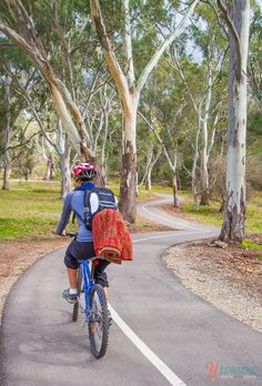 Go biking and have a picnic in the Barossa Valley, South Australia