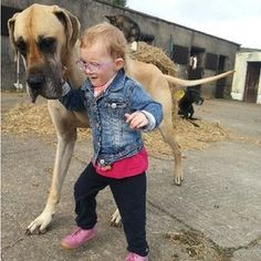 Family Great Dane protects 3-year-old with epileptic seizures